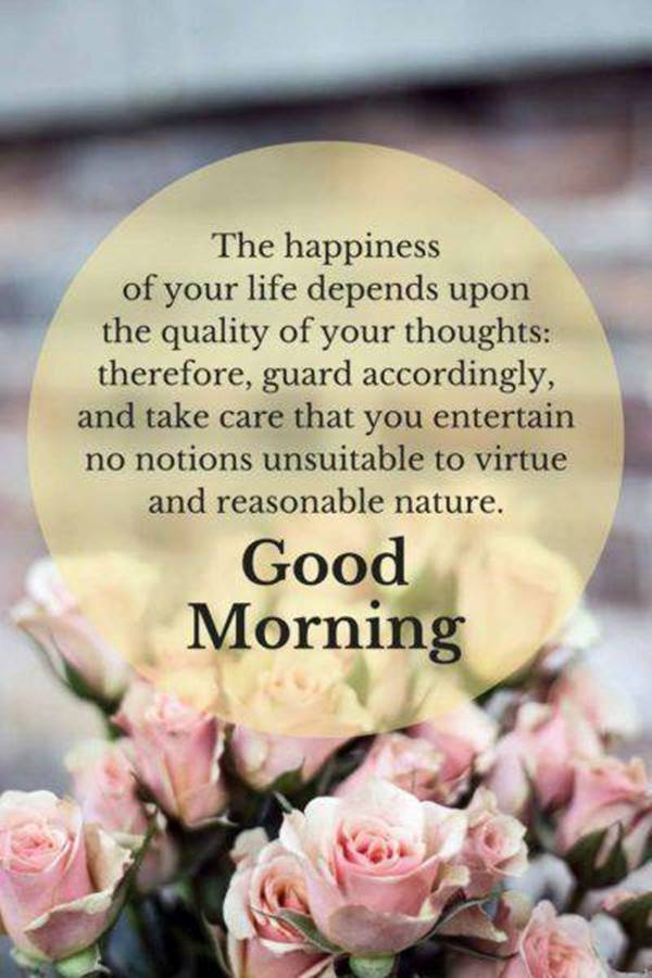 45 Motivational Morning Messages - Good Morning ideas | good morning thoughts, good morning day images, bright morning quotes