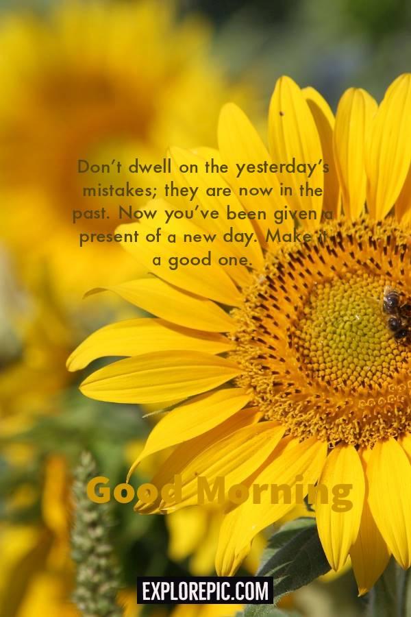 45 Motivational Morning Messages Good Morning ideas | good day message, good day quotes, good day wishes