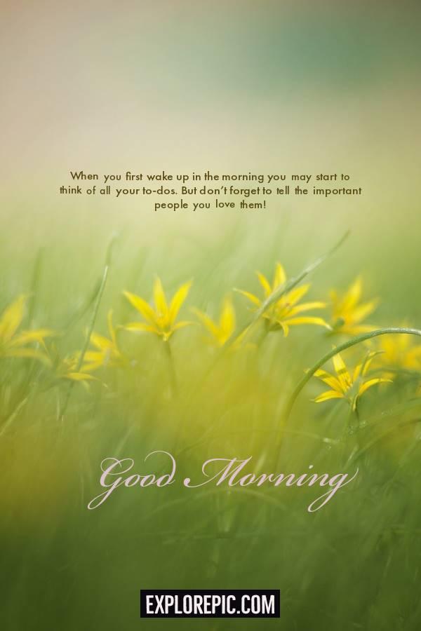 45 Motivational Morning Messages Good Morning ideas | morning message, morning quotes, morning text