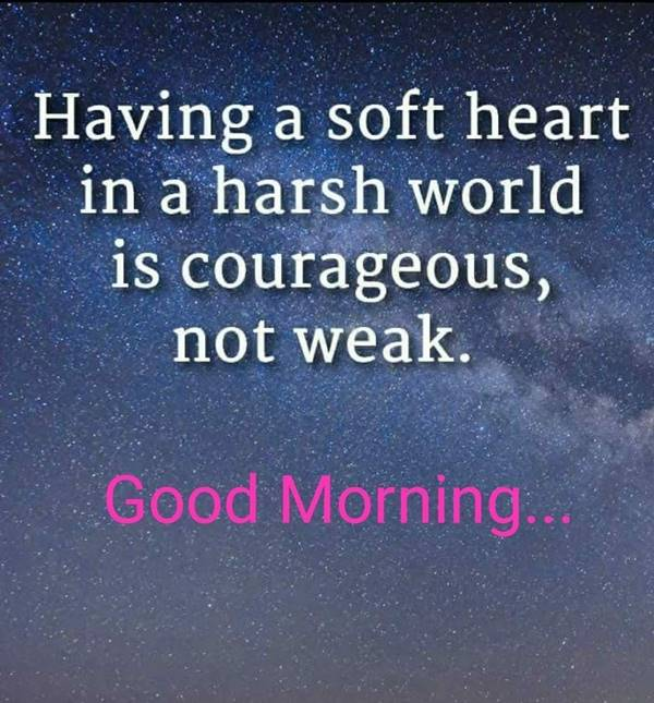 60 Romantic Good Morning Messages for Her | have a beautiful day my love, good morning sms for her, sweet good morning messages for her
