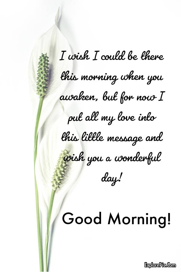 60 Romantic Good Morning Messages for Her | good morning love message, good morning my sweetheart, have a good day my love