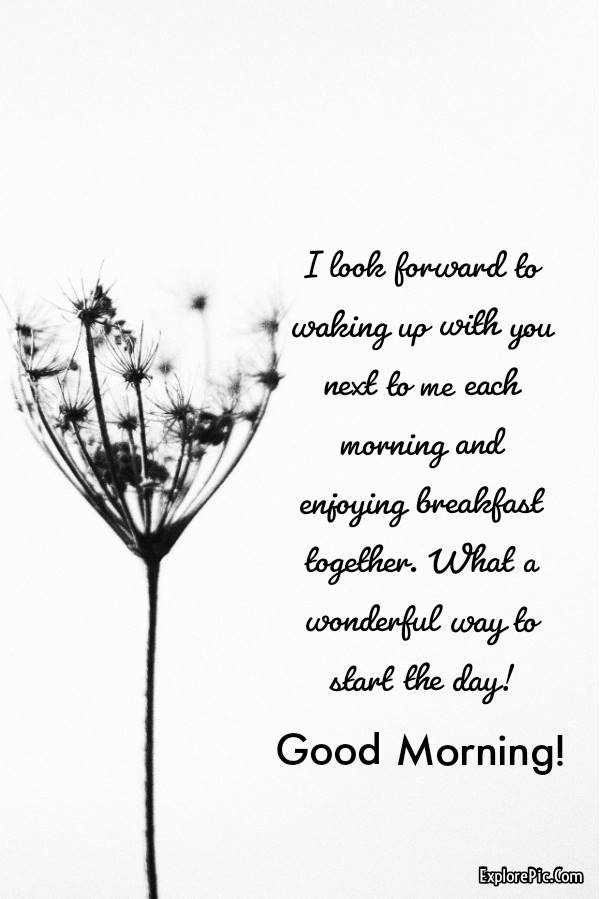 60 Romantic Good Morning Messages for Her | good morning romantic, good morning love you, good morning message for her