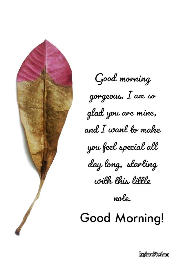 60 Romantic Good Morning Messages for Her | good morning love quotes, romantic good morning messages, good morning my sweet love