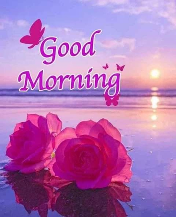70 Good Morning Cards and Messages For Friends | good day messages for friends, good morning for group friends, good morning texts for friends