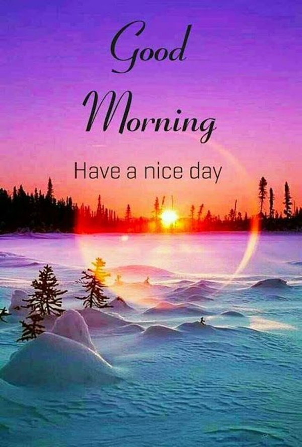 70 Good Morning Cards and Messages For Friends | good morning messages for friends with pictures, good morning friend have a nice day, thinking of you friend messages