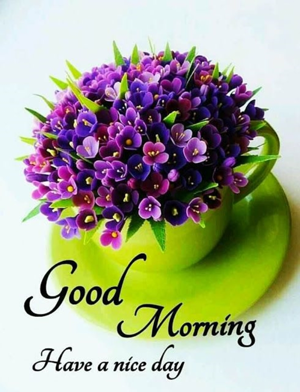 70 Good Morning Cards and Messages For Friends | good morning blessings friends, good morning text for best friend girl, good morning letter to a friend