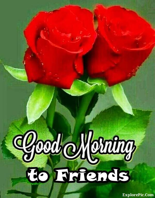 70 Good Morning Cards and Messages For Friends | good morning dear friend, good morning dear friends, good morning my dear friend