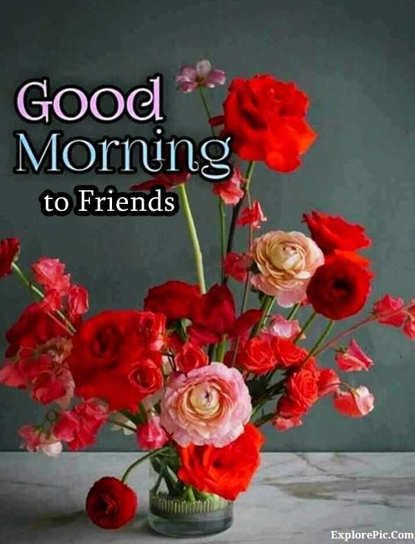 70 Good Morning Cards and Messages For Friends | good morning sweet friend, have a good day my friend, heart touching good morning messages for friends