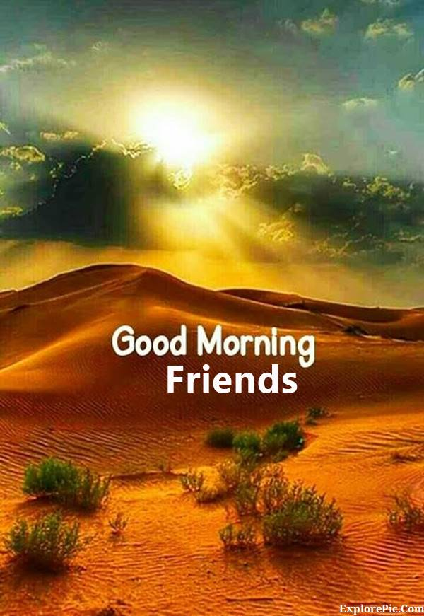 70 Good Morning Cards and Messages For Friends | friends good morning, goodmorning friend, good morning to friends