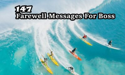Farewell Messages For Boss Wishes Quotes Messages