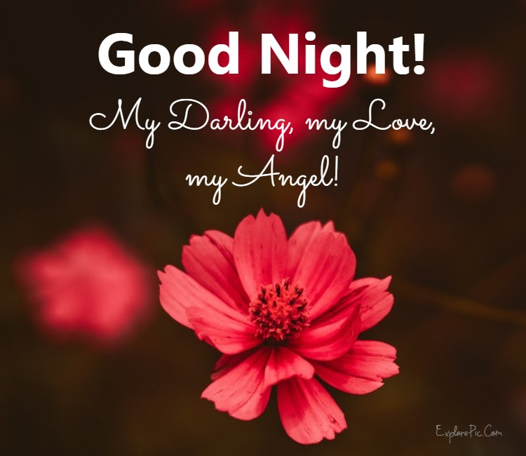 good night messages for her