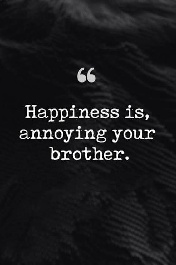 145 Brother Quotes for 2022 Happy Quotes About Brothers 11
