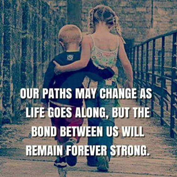 145 Brother Quotes for 2022 Happy Quotes About Brothers 16
