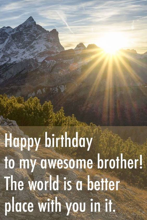 145 Brother Quotes for 2022 Happy Quotes About Brothers 21