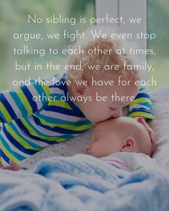 145 Brother Quotes for 2022 Happy Quotes About Brothers 28