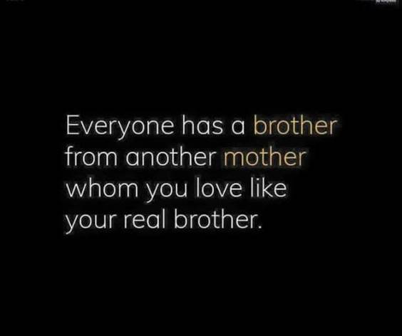 145 Brother Quotes for 2022 Happy Quotes About Brothers 38