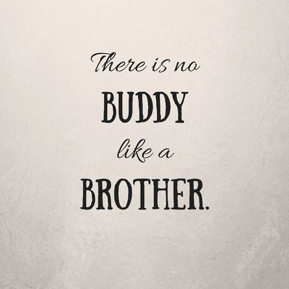 145 Brother Quotes for 2022 Happy Quotes About Brothers 6
