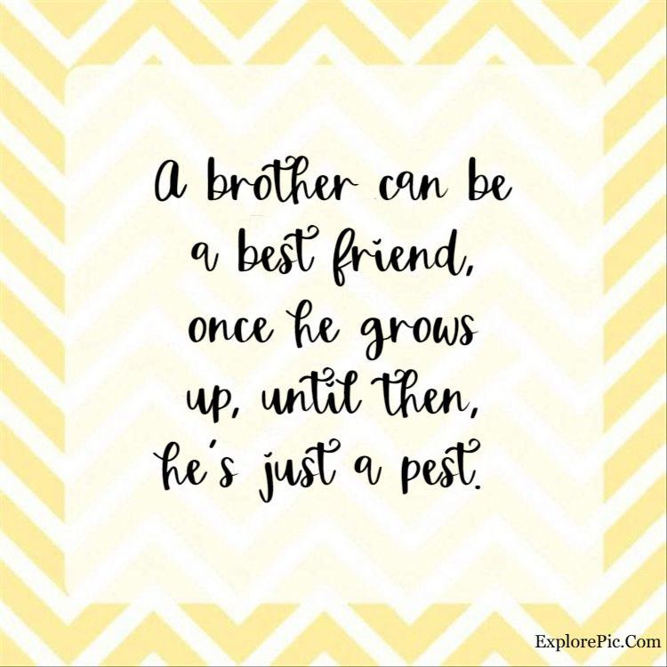 brother quotes - A brother can be a best friend, once he grows up, until then, he's just a pest.