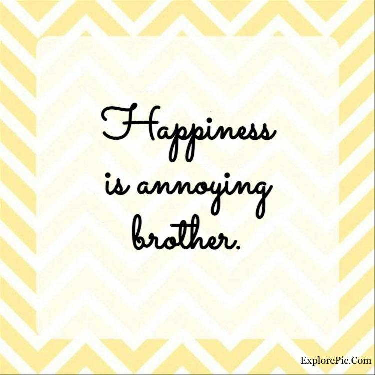 Happiness is annoying brother.