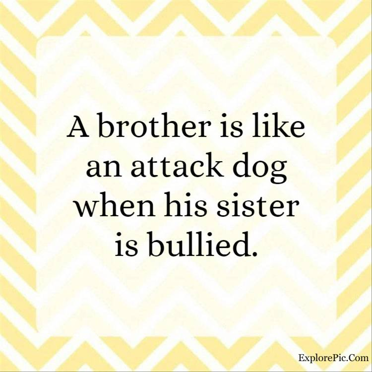 sister brother quotes - A brother is like an attack dog when his sister is bullied.