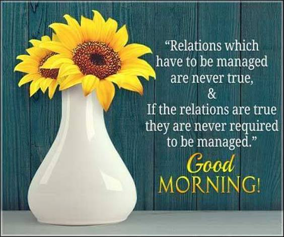 Morning Wishes