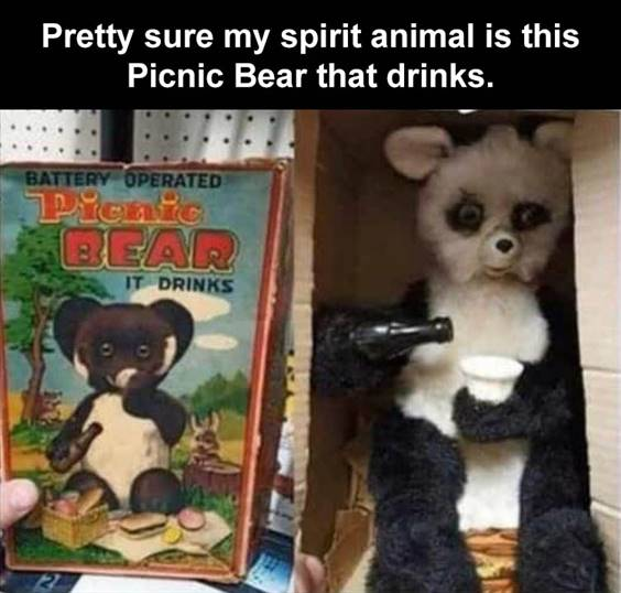 """Top 50 Funniest Memes Of The Week funniest memes pinterest """"Pretty sure my spirit animal is this picnic bear that drinks."""""""
