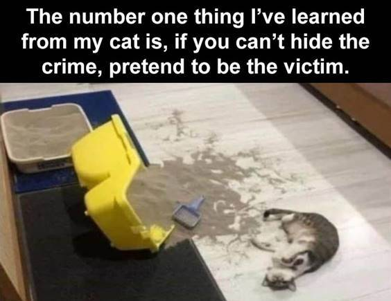 52 Hilarious Funny Memes Of All Time 47