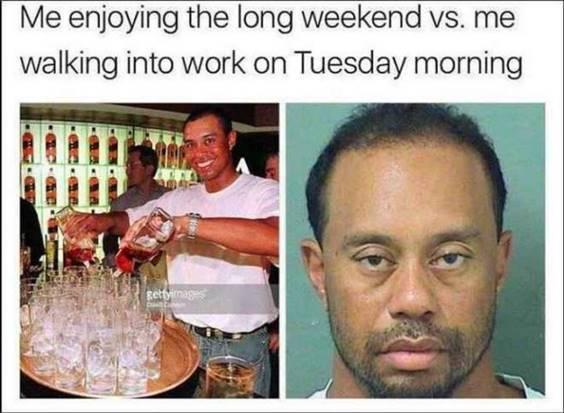 funny tuesday memes