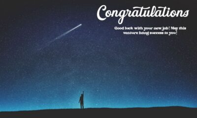 Congratulation Messages For New Job Wishes Quotes Messages