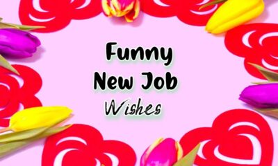 Funny New Job Wishes Messages With Quotes