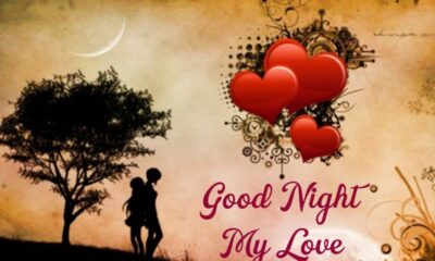 Good Night Love Messages The Best Collection