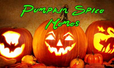 Pun Pumpkin Spice Memes Images And Witty Quotes