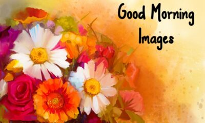 Special Good Morning Images With Quotes And Cute Good Morning Quotes