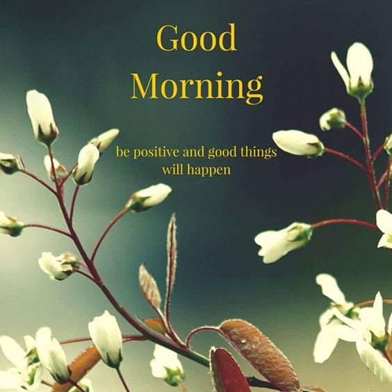 cool good morning images Special Good Morning Images With Quotes And Cute Good Morning Quotes