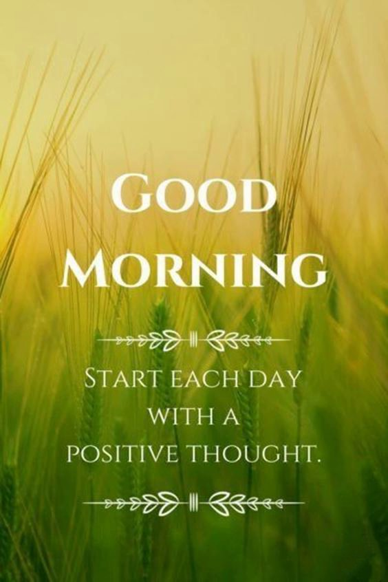 good morning beautiful pictures Special Good Morning Images With Quotes And Cute Good Morning Quotes