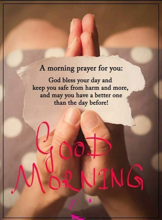 good morning nice picture Special Good Morning Images With Quotes And Cute Good Morning Quotes