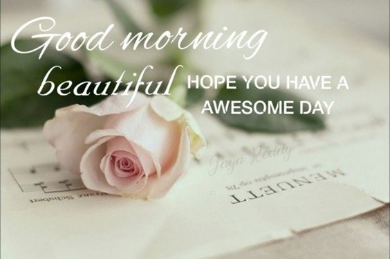 images good morning Special Good Morning Images With Quotes And Cute Good Morning Quotes