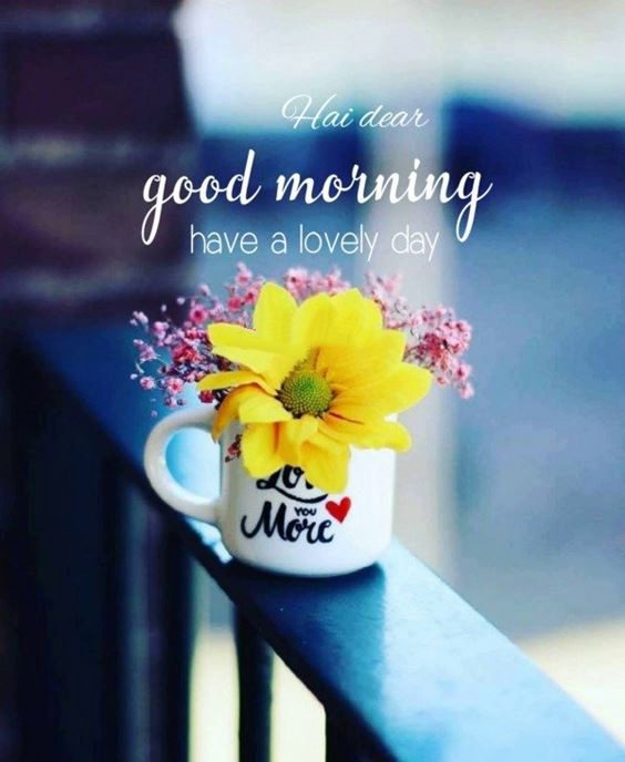 pictures that say good morning Special Good Morning Images With Quotes And Cute Good Morning Quotes
