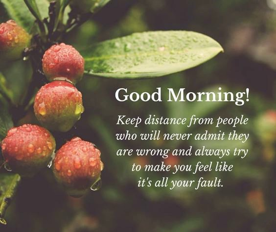 pictures to wish good morning Special Good Morning Images With Quotes And Cute Good Morning Quotes