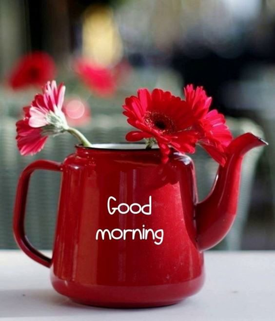 smile good morning images Special Good Morning Images With Quotes And Cute Good Morning Quotes