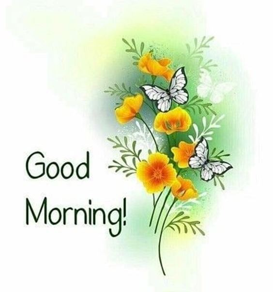 unique good morning images Special Good Morning Images With Quotes And Cute Good Morning Quotes