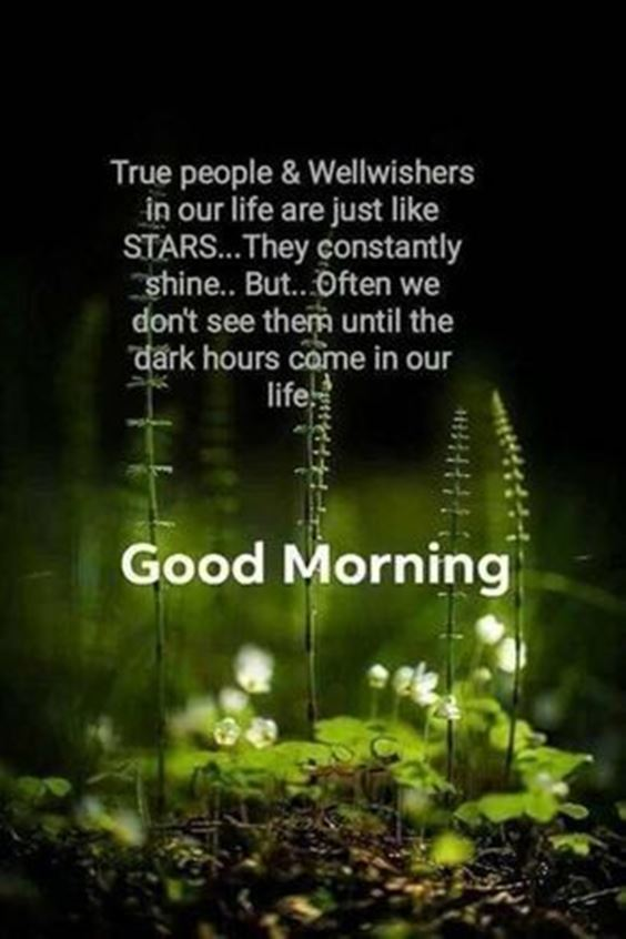 wednesday good morning images Special Good Morning Images With Quotes And Cute Good Morning Quotes