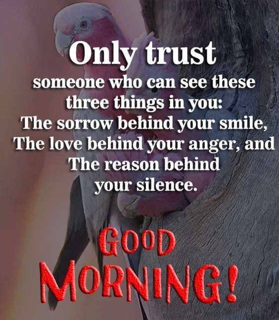 www good morning image Special Good Morning Images With Quotes And Cute Good Morning Quotes
